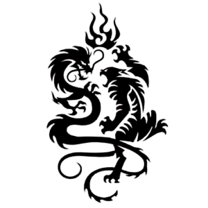 shaolin-tattoo-dragon-tiger